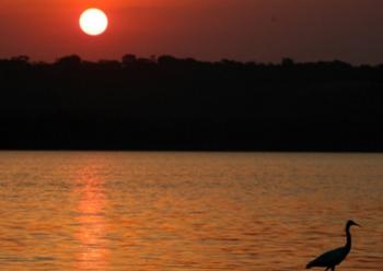 ビクトリア湖.PNG